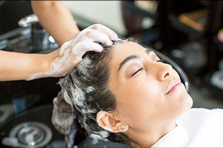 Hos Salon Vivi får du den bedste behandling! - Helfarve inkl. hårkur, vask og føn hos Salon Vivi Dronninglund, gælder til alle hårlængder, værdi kr. 600,-