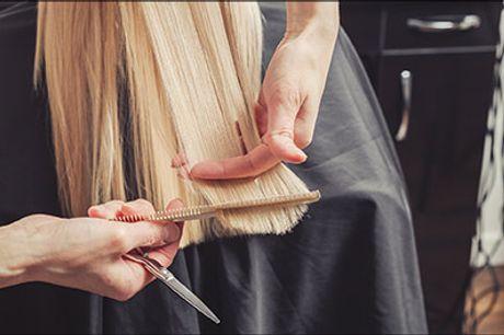 Er du klar til årstidens fester? - Dameklip og reflekser inkl. vask, hårkur og føn hos Salon Vivi Dronninglund, værdi kr. 850,-
