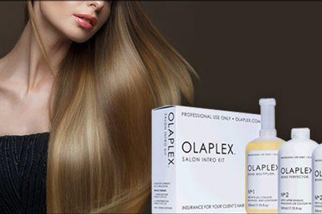Kendt og elsket verden over! - Olaplex behandling hos Pretty Hair, værdi kr. 450,-