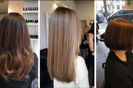 Sæt fokus på frisuren - Velkommen hos Hair & Beauty By Hailak - Frisørbehandling inkl. vask og føn, vælg ml. dameklip, helfarve eller en farve striber, værdi op til kr. 1250,-