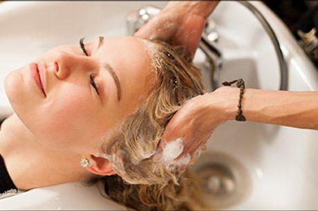 Vil du spare penge? Lækkert frisørtilbud med rabat! - Dameklip inkl. helfarve, hårkur, hovedbundsmassage samt vask og føn hos Salon Scan-Hair, værdi kr. 1430,-