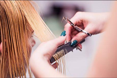 Forkæl dig selv med en behandling hos Adrianahaar.dk! - Farve i LANGT hår inkl. vask, hårkur og føn, værdi kr. 1170,-