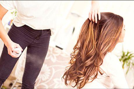 Lækker luksus behandling! - Luksus klip, hårkur, lille Olaplex kur m.m. hos Tika House of Hair, værdi kr. 735,-