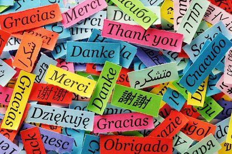 Aulas de Línguas em Grupo: Inglês, Italiano, Alemão, Francês ou Espanhol, no Ginásio Clube Português, por apenas 59,90€