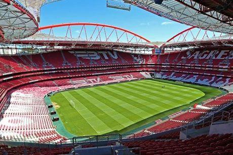 Conheça o ninho da Águia! Sozinho ou em família, visite o Estádio da Luz, o Museu e receba ainda um cachecol do Benfica, desde 11,90€.