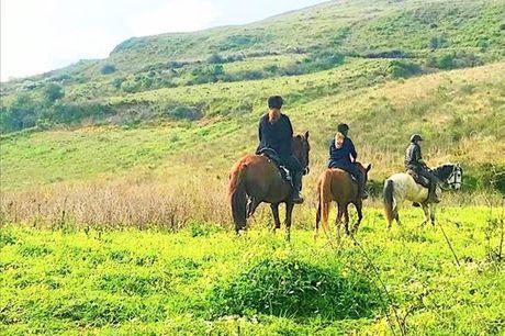 Passeio a cavalo na Serra da Archeira por apenas 43,90€. Fará ainda uma visita a duas das fortificações da Rota Histórica das Linhas de Torres: os fortes da Archeira e Feiteira.