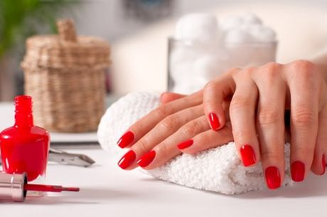 Gel Polish for Hands or Feet, or Both at Beauty4ever (Up to 52% Off)