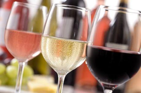 Iberisch Schiereiland wijnproeverij voor 2 tot 10 personen incl. hapjes bij Alentejo Wijnen