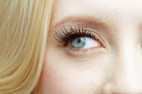Full Set of Eyelash Extensions at Beautylicious