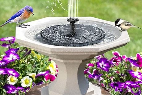 £9.99 instead of £39.99 (from Magic Trend) for a solar powered mini water fountain - save 75%