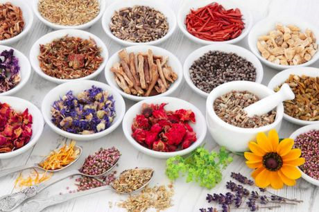 £16 for a master herbalist online course - cpd certified! from International Open Academy
