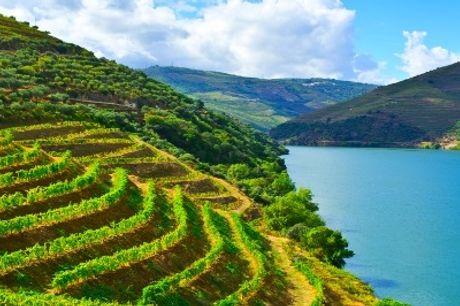 Vila Galé Collection Douro 4*: 2 Noites com Pequeno-almoço e Visita à Adega Val Moreira com Prova de Vinhos. O Douro a Ano Todo!