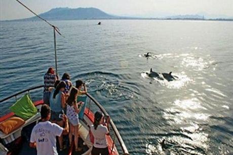 Cruzeiro Get Zen - Rota dos Golfinhos no Estuário do Sado. Uma Experiência para Toda a Família com Degustação e Muito Mais desde 17.50€!