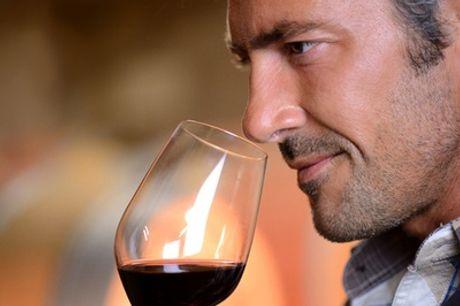 Portugese wijnproeverij voor 2 tot 10 personen incl. hapjes bij Alentejo Wijnen in De Meern