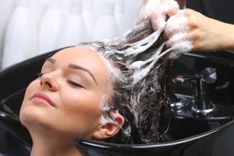 Formule shampoing, coupe et brushing au salon de coiffure AZ Ebène