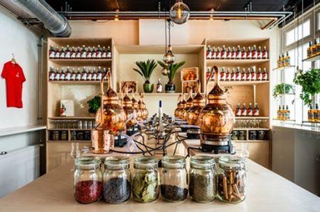 Deluxe distilleer-workshop bij Spirited Union Distillery in Amsterdam