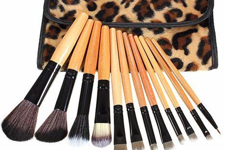Leopard Cosmetics Make-up Brushes 1 × 12-delige Professionele Cosmetische Make-up Borstel Set. 1 × Oprolbaar imitatie lederen etui met panter print.