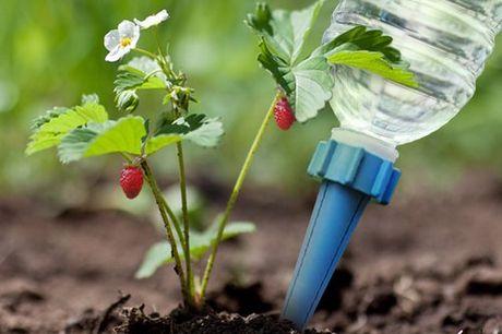 4x Irrigatie pipetten Zorgen ervoor dat je planten water krijgen terwijl jij op vakantie bent. Automatische en gelijkmatige watertoevoer. Passen op alle soorten flessen. Gemaakt van weerbestendig plastic.