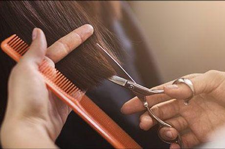 Nu kan du få frisket frisuren op med et supergodt tilbud hos Frisør Kløve! - Dameklip inkl. bundstriber med 1 farve - max 10 cm., vask og føn. Værdi kr. 950,-
