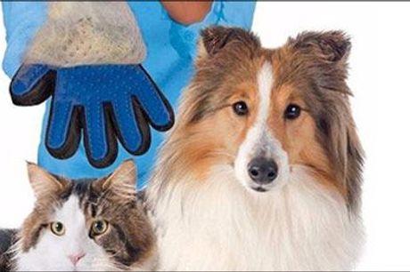 Dit kæledyr vil nyde hvert eneste strøg..  - Pelsplejehandske til hund og kat fra 4mobil, værdi kr. 213,-
