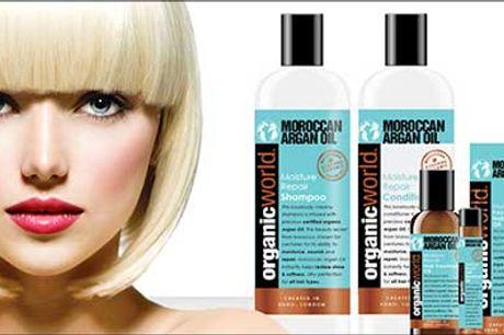 Ren luksus til håret - spar 77% på markedets populæreste hårpleje! - Moroccan argan oil økonomipakke, vælg ml. 4 pakker, inkl. fragt, værdi kr. 1295
