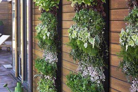 Borsa per giardino verticale. Perfetto per giardini e balconi. Prodotto alla moda usato anche in aeroporti e ristoranti di lusso. Garantisce una bella parete verde. Occupa poco spazio. Dentro o fuori, il giardino può essere ovunque.