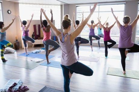 10 lezioni di yoga da 90 minuti per una o 2 persone al centro Ananda Marga (sconto fino a 66%)