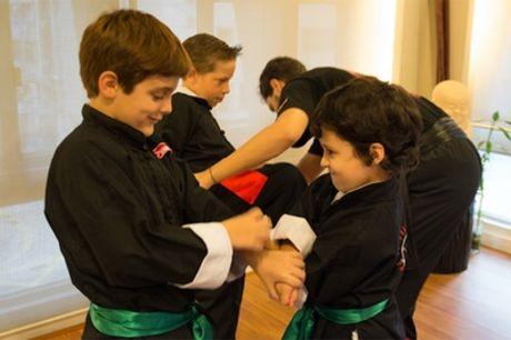 Five or Ten Panda or Tigers-Dragons Martial Arts Classes at Omni Martial Arts