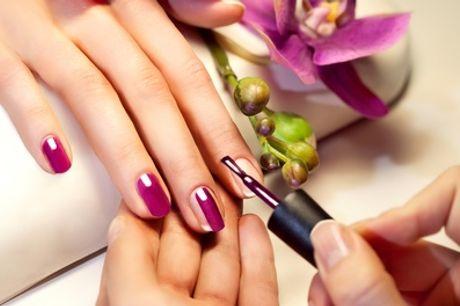 Una o 3 manicure con smalto semipermanenei da Love Hair Nail