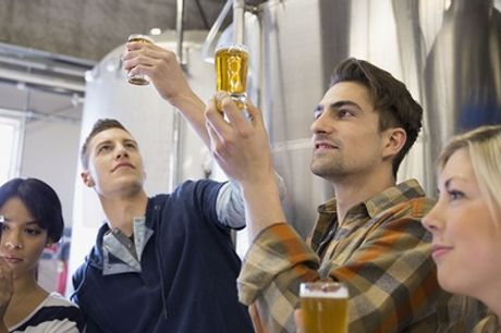 Brewery Tour with Beer Tasting for Up to Six at Derventio Brewery