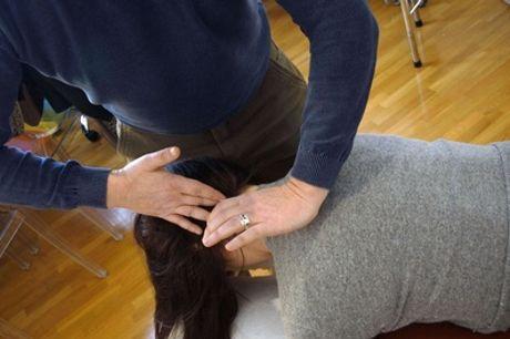 Una seduta o percorso di 12 sedute chiropratiche al centro Chiropratica Universale (sconto fino a 70%)