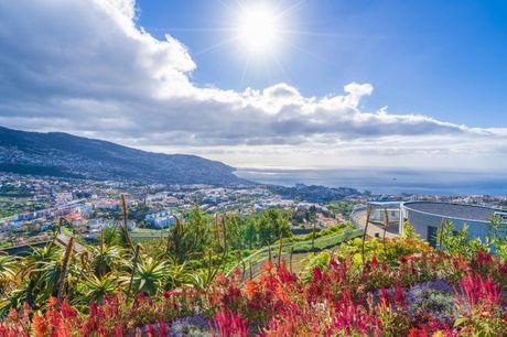 Få 7 nætter på solrige Madeira inkl. billeje, 2 hotelophold og morgenmad. Inkl. direkte fly fra KBH, 7 nætter, billeje og morgenmad