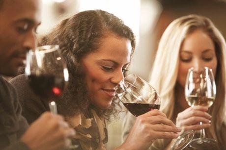 Entdecker-Weinprobe mit 10 Weinen für 6 bis 10 Personen in eigener Location (bis zu 71% sparen*)