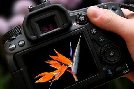3 Stunden Foto-Workshop und Photowalk Outdoor für 1 oder 2 Personen bei Photographer David Hanykyr (bis zu 72 % sparen%)