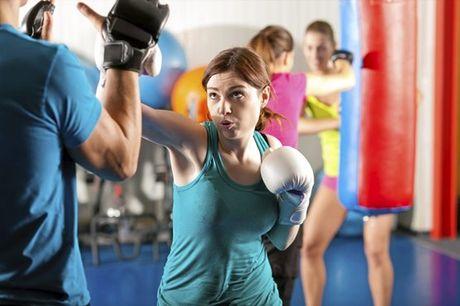 Gostava de experimentar uma nova modalidade a dois? Já pensou em Kickboxing ou Muay Thai? Aproveite agora, temos a oportunidade certa si! Seja para experimentar ou repetir um treino de Kickboxing e Muay Thai, a K.O Team para si um Treino Personalizado par