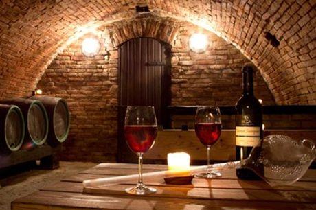 Journée dans les vignobles (Alsace, Bordeaux, Bourgogne, Loire) pour 1ou2 pers avec Vinotilus