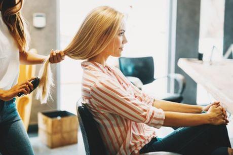 Herren- oder Damenhaarschnitt für alle Haarlängen opt. mit Ansatzfarbei bei Salon L'amour (bis zu 56% sparen*)