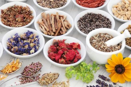 £19 for an online master herbalist course. Highlights: A herbal health online course Learn to improve your mental and physical wellness through traditional cures Save 80% Find out more: Herbal health is a common medicinal practice that is used to treat a