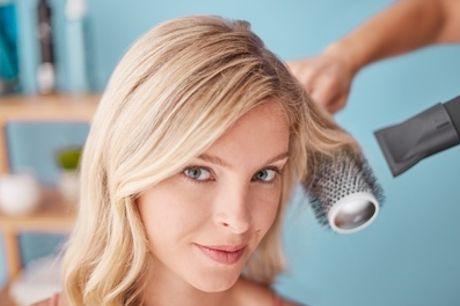 Brazilian Blow-Dry with Optional Cut from Renner Menezzes Brazilian Hair Stylist