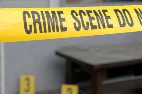 M�ster Online en Criminolog�a y Criminal�stica