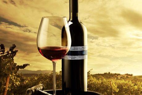 Weinthermometer aus rostfreiem Edelstahl. Must-Have für jeden Weinliebhaber. Misst Temperaturen zwischen 4 und 24°C. Aus stoßfesten und pflegeleichten Edelstahl hergestellt. Benötigt keine Batterien. Passt auf jede handeslübliche Flasche