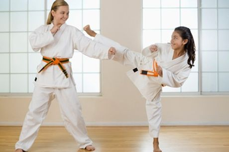 Three or Six Martial Art Classes for Child or Adult at Shin Gi Tai Martial Arts Academy