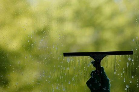 Reinigung von bis zu 30 Fenstern mit Reinigungsmittel + Anfahrt bei Miki Reinigungsservice (bis zu 44% sparen*)