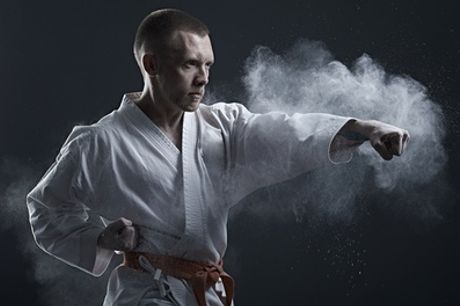 Six-Week MMA Beginner Course or Membership with MSC Martial Arts and Fitness