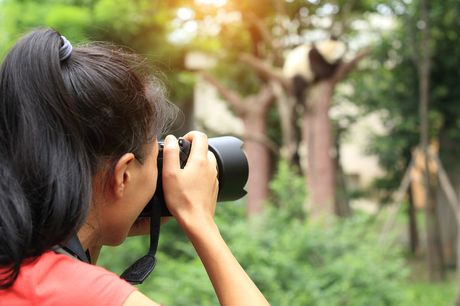 £9 for an online wildlife photography course taught by  Heather Angel from Learning with Experts