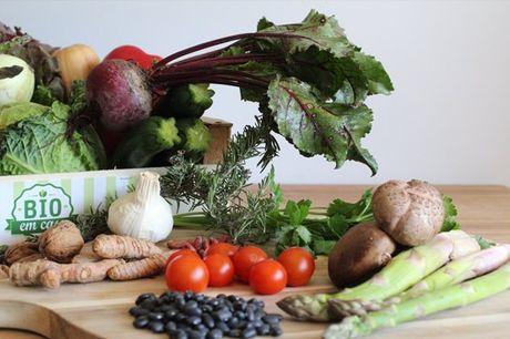 Receba em sua casa os produtos mais frescos, escolha o seu cabaz biológico e usufrua de refeições saudáveis. Cabaz desde 14,90€.