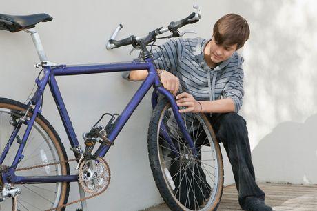 £14 for an online bike-maintenance course