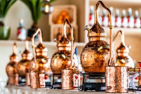 Rondleiding door de distilleerderij met aansluitend een rum-proeverij bij Spirited Union in Amsterdam-Zuid