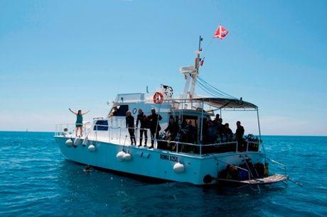 Corso Try Scuba o Scuba Diver, per una o 2 persone, con il Gruppo Nasim (sconto fino a 85%)