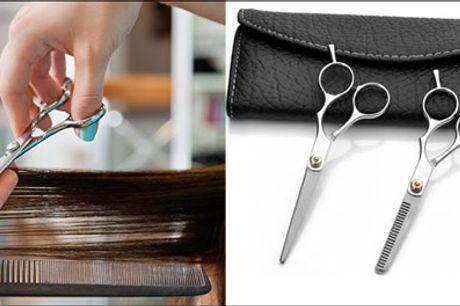 Klip familien med PROFF sakse! - Køb et frisør-sakse sæt fra The 99 inspirations, værdi kr. 469,- Luksus sakse i høj kvalitet!